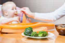 Брокколи для детей: полезные свойства, рецепты