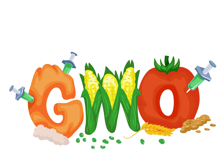 ГМО в детском питании ГМО Вред
