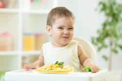 Чем кормить ребенка в 1 год? Режим питания